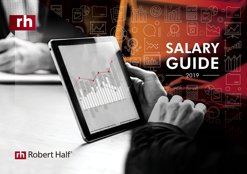 Salary Guide 2019 Icon